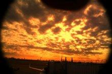 羽田空港から見た夕日