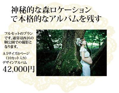 森でのマタニティ